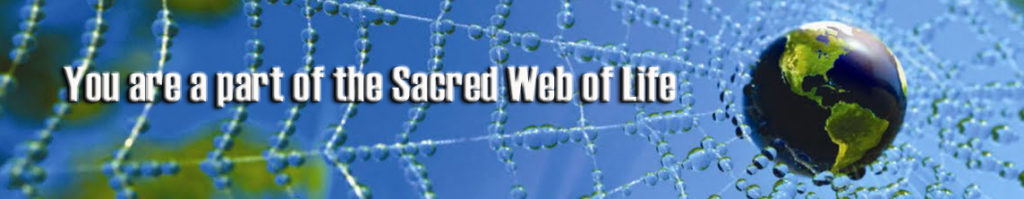 web-of-life-long