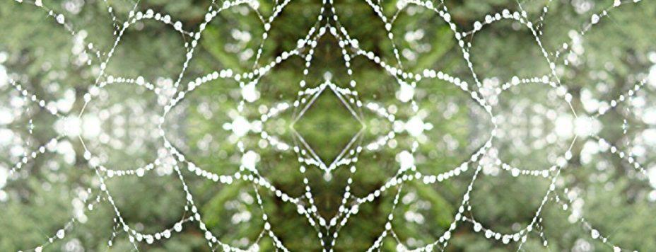 soul restoration web