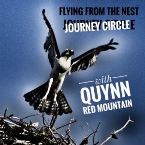 flying from nest-01
