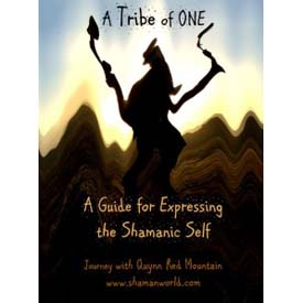 A TRIBE OF ONE Shamanic Healing Training E-Course  $29